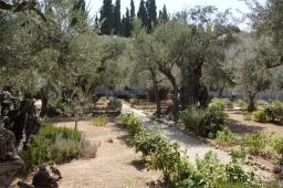 gethsemani3